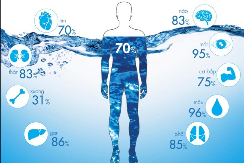 70% cơ thể là nước